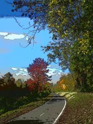 au-bord-du-canal-automne-2010.jpg