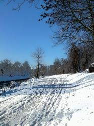 au-bord-du-canal-hiver-2010.jpg