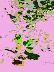 pluie-de-feuilles-version-2.jpg
