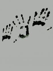 traces-2011.jpg