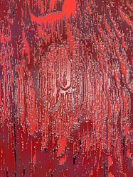 tranche-de-bois-rouge-juin-2010.jpg