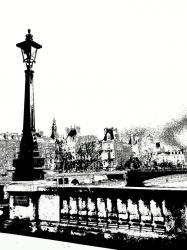 vue-du-pont-notre-dame-2011.jpg